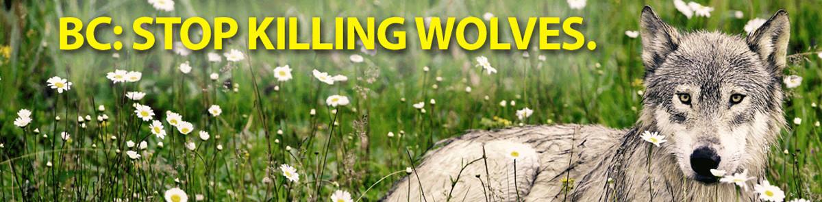 Brad Hill wolf banner