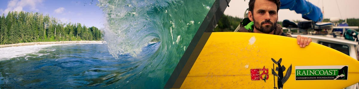 A wave breaks, and a surfer sits showing his board.