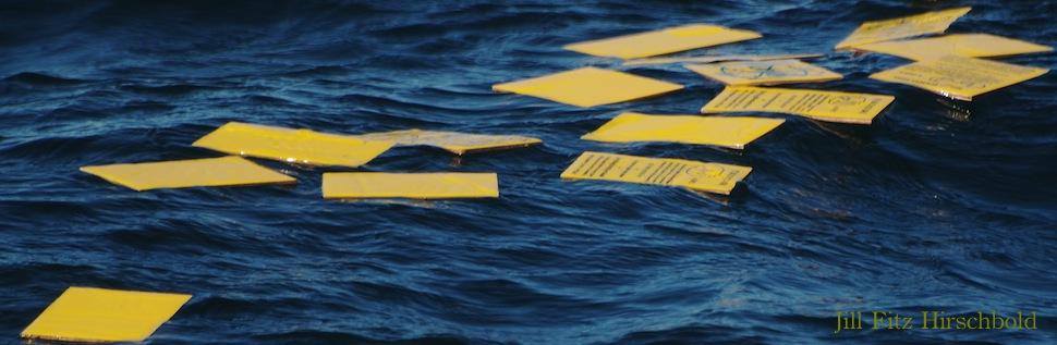 Raincoast Card Drop Saltspring