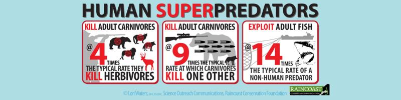 superpredator-info1200x300
