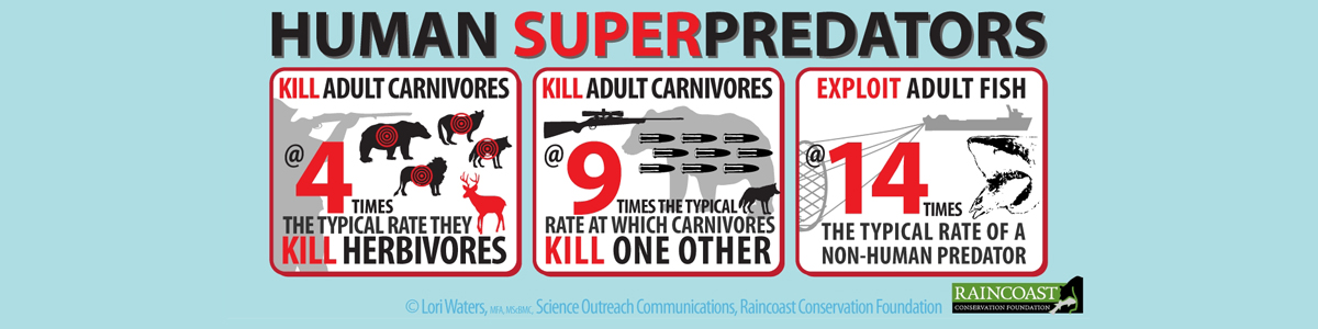 Human Superpredators
