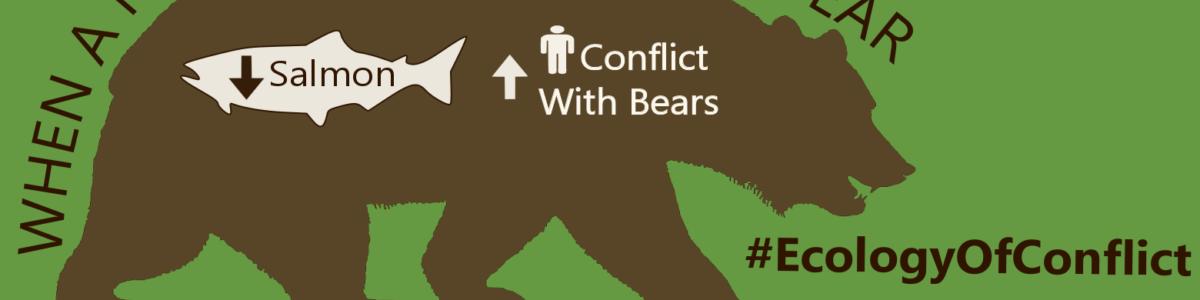 Artelle et al Bear Infographic_HakaiRainCoast_By Josh Silberg