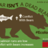 Artelle et al Bear Infographic_HakaiRainCoast_By Josh Silberg