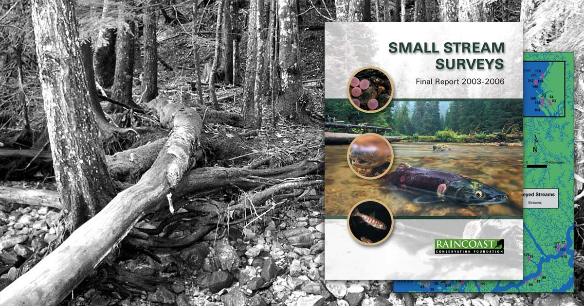 Small Stream Surveys report cover overlayed on a black and white photo of a small forest stream.