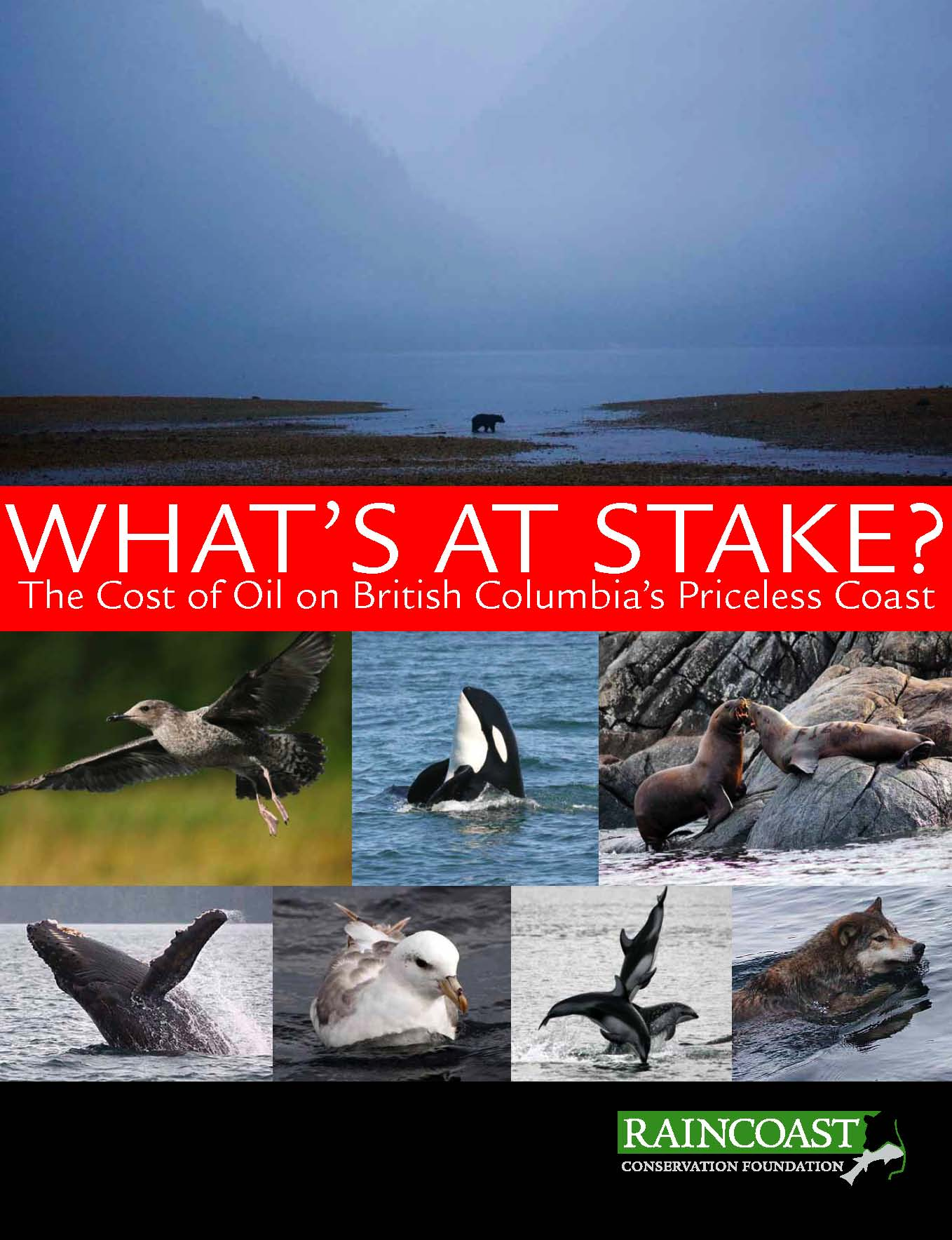 What's at Stake: the Cost of Oil on BC's Priceless Coast cover