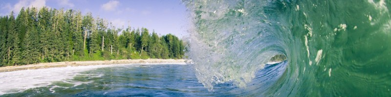 a barrel wave rolls into the shore in the Great Bear Rainforest