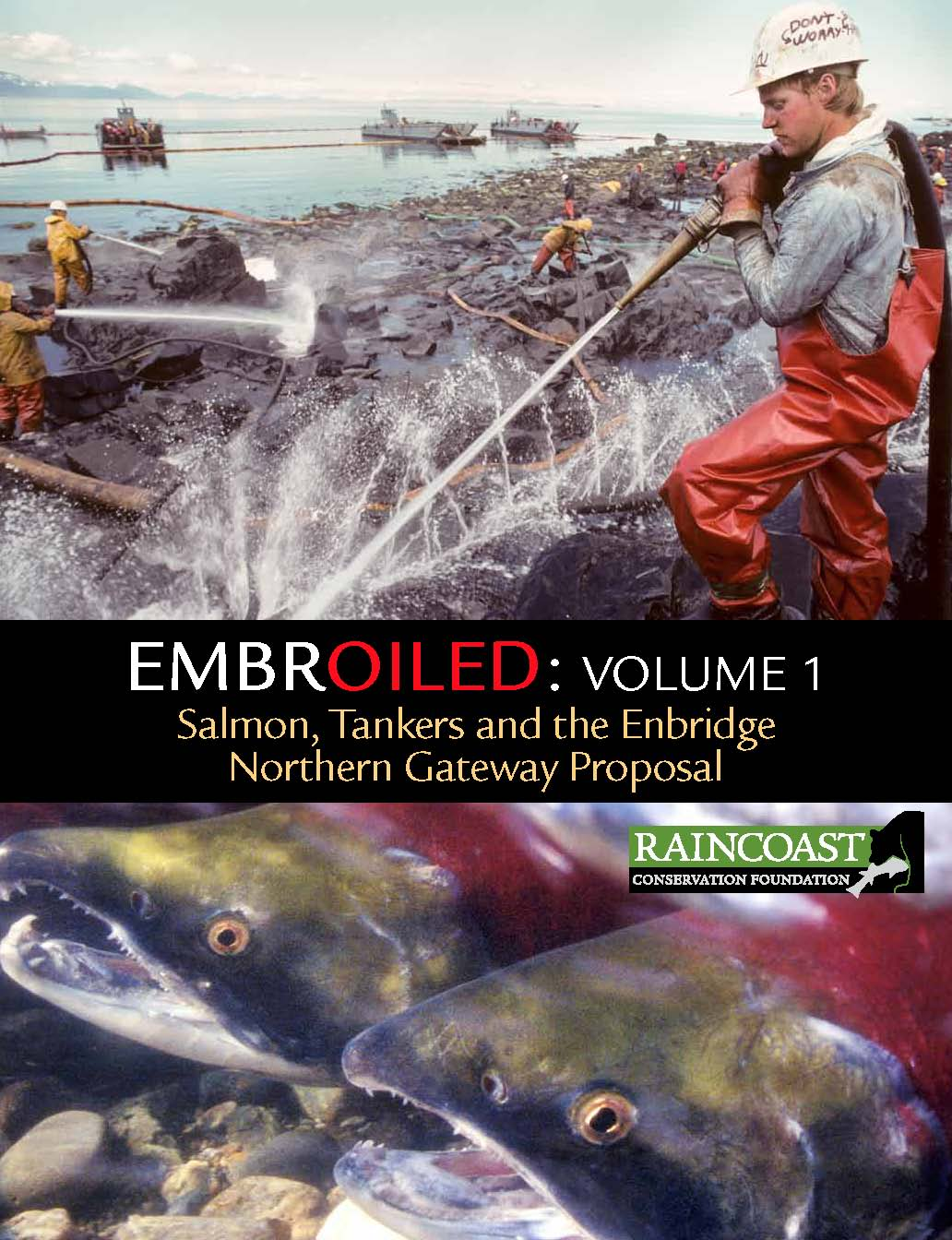 EMBROILED_cover