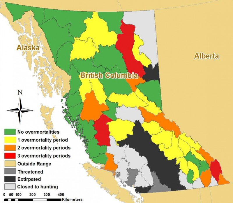 Map of grizzly overmortality periods in British Columbia by region