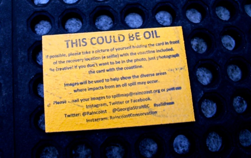 Oil spill simulation gets locals talking about possibility of crude along the Salish Sea