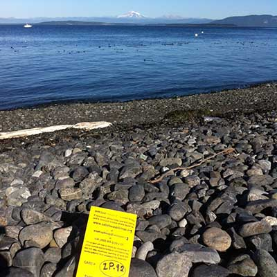 a drift card sits on a rocky beach with Mt Baker in the background