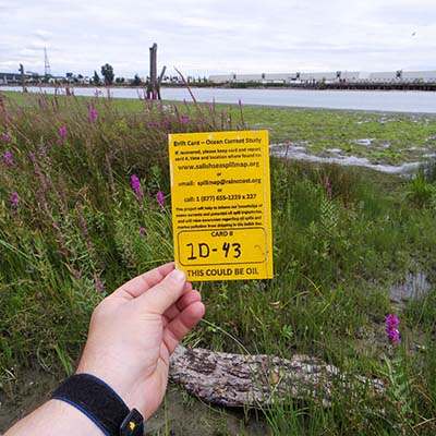 An arm holds a drift card up in front of a meadow and a beach