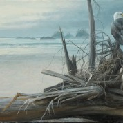 painting of Calvert Island Eagle by Robert Bateman