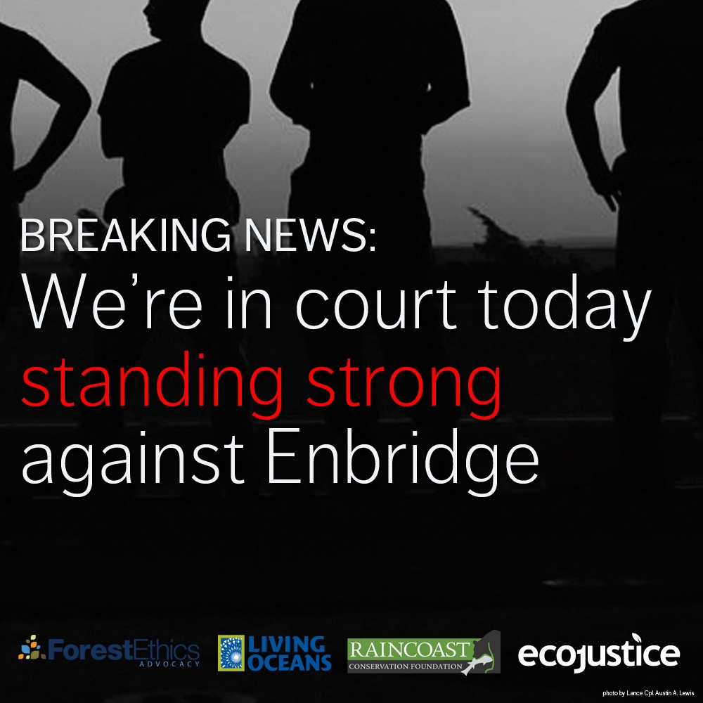 Raincoast and partners go to court to quash Enbridge pipeline approval