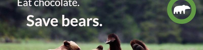 Eat chocolate, save bears.