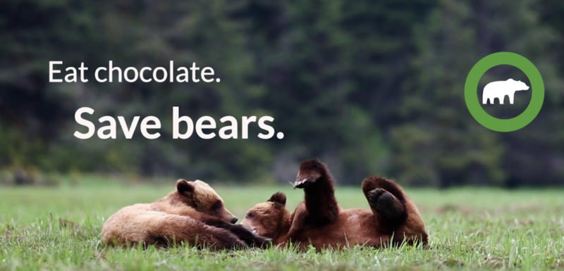 Eat chocolate, save bears.