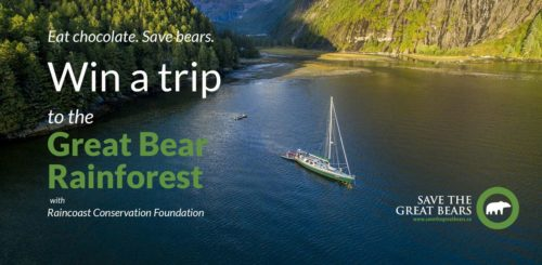 Eat chocolate win a trip in the Great Bear Rainforest.