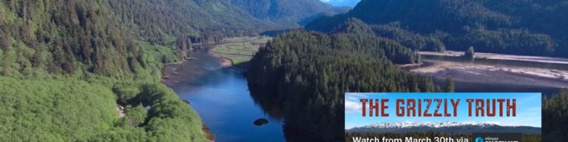 Documentary, The Grizzly Truth: a scene in an inlet of the Great Bear Rainforest