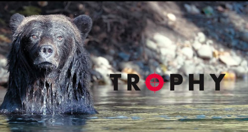 Trophy the movie