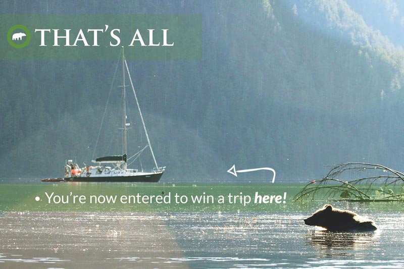 Congratulations, you're now entered to win a trip
