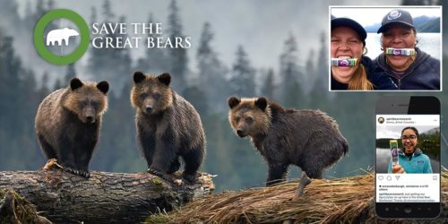 Save the Great Bears: people pose with their Grizzly Bars and three bears stare into the camera