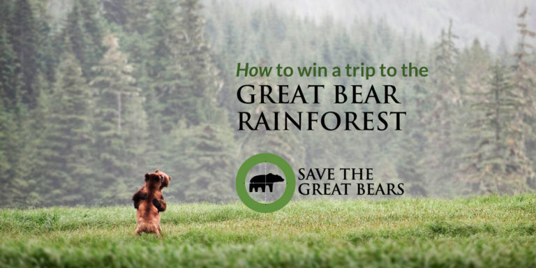 Eat chocolate, save the bears and win a trip with Raincoast