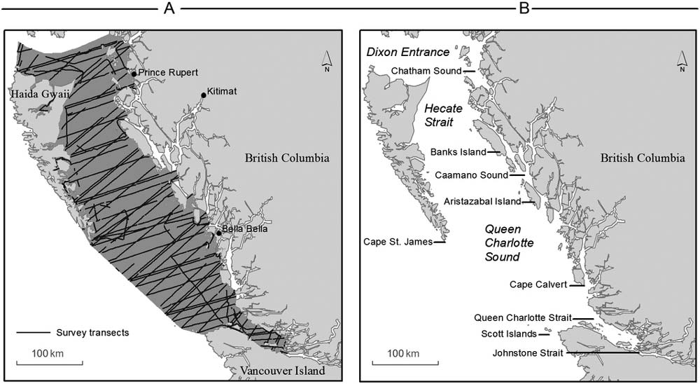 A map of the study region, and transects, on the coast of BC, Canada