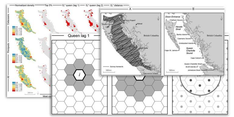 Research: Quantifying marine mammal hotspots in British Columbia, Canada