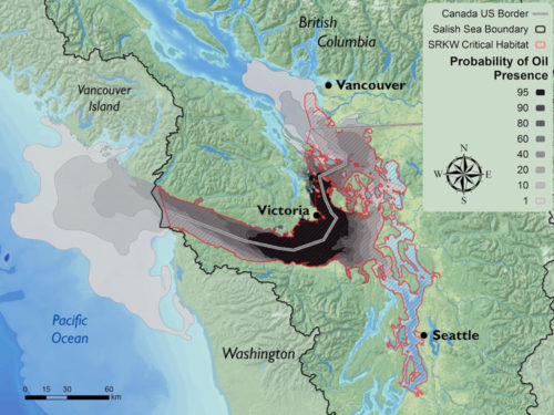 A map of a model of an oil spill and bitumen at Arachne Reef in Northern Haro Strait BC.