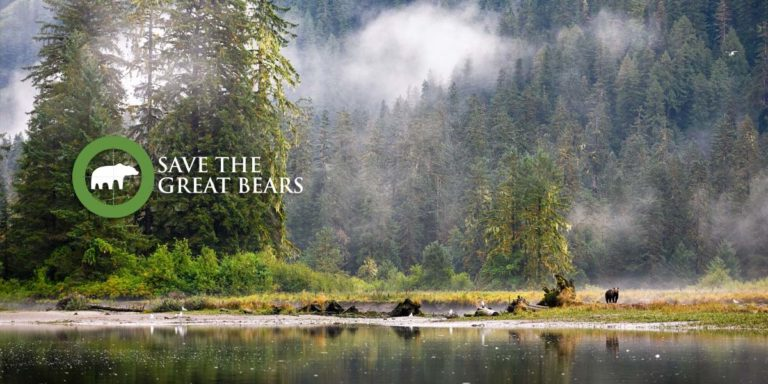Raincoast submission on the grizzly hunt consultation