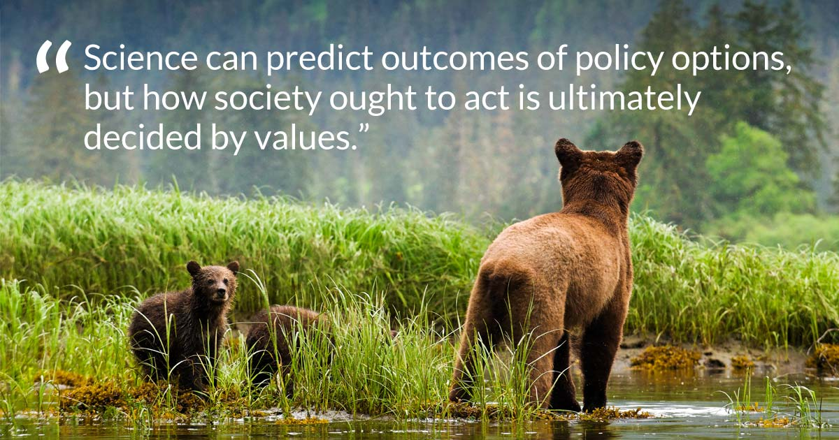 "Three bears, a mother and cubs, stand in the grass and water, with some words overtop: ""Policy cannot be dictated by science alone..."""