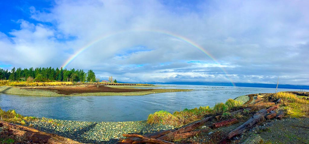 Panorama of the field site at the mouth of the Big Qualicum river.