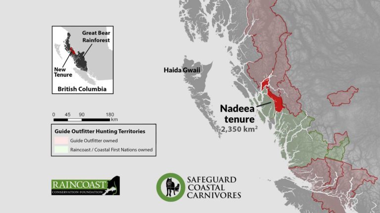 Fundraising resources to help stop commercial trophy hunting in the Nadeea tenure