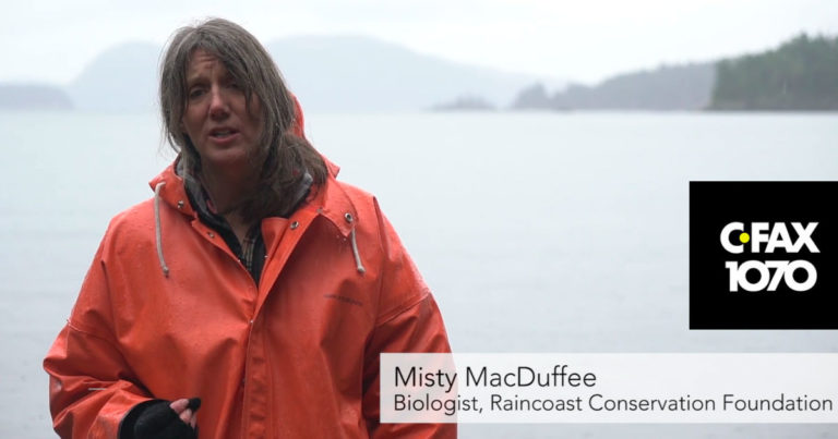 Misty MacDuffee speaks to lack of government action on Southern Resident killer whales