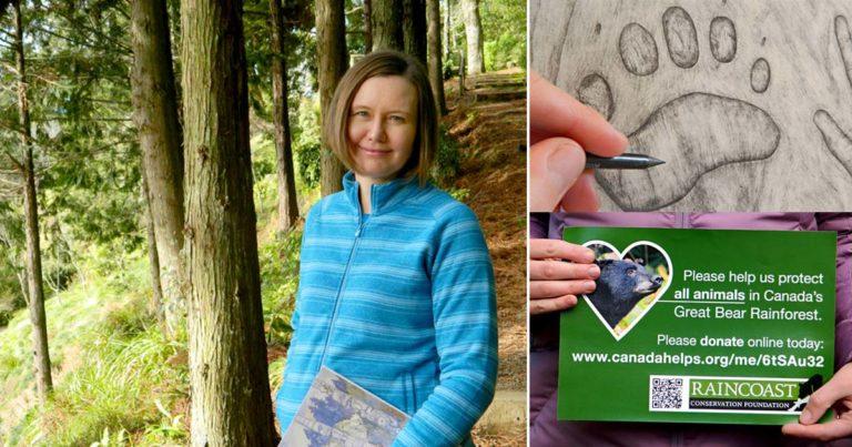 Angela Gnyp: A wilderness artist down under