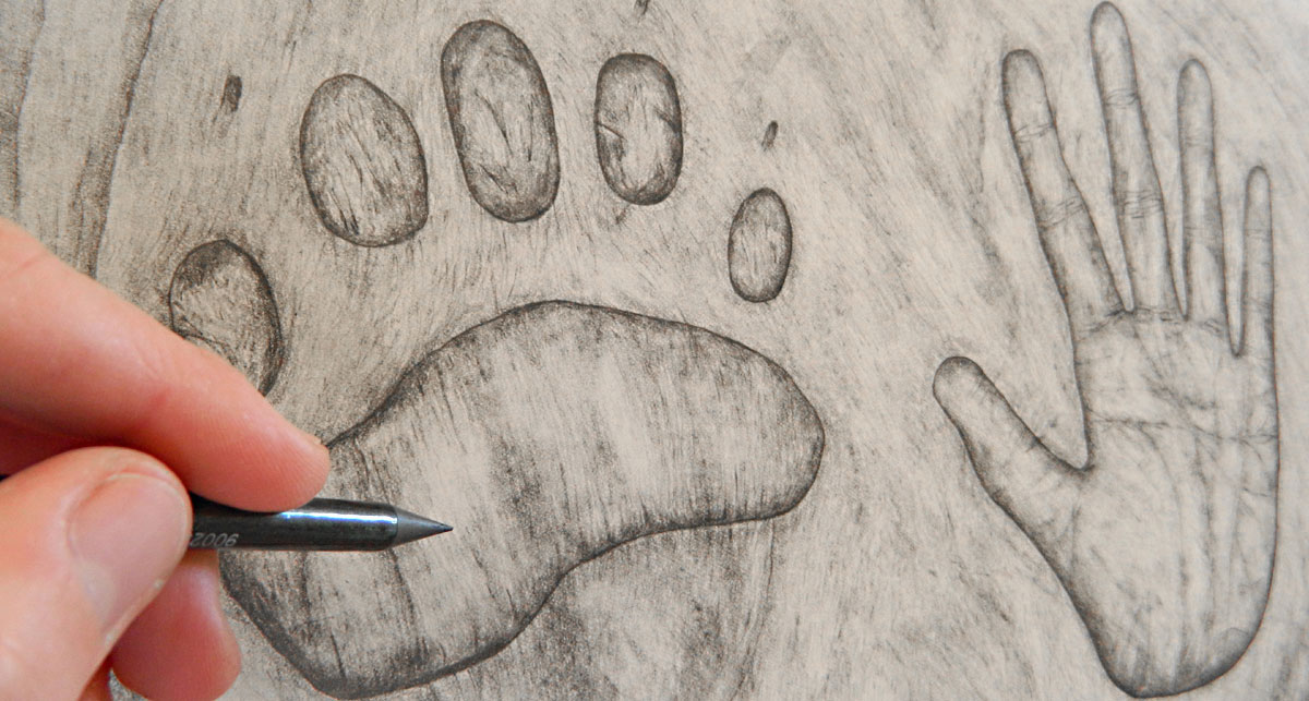 Angela Gnyp's drawing of a paw print and hand
