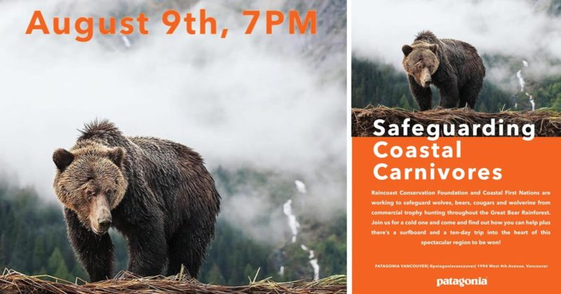 A bear stands ready: poster for a Safeguard Coastal Carnivores event in Vancouver