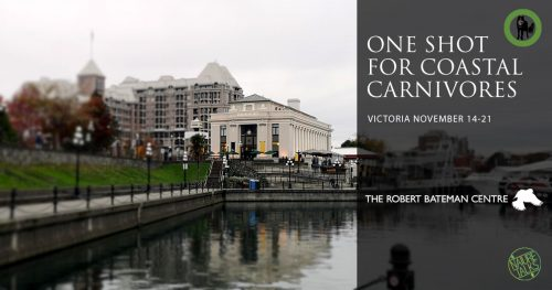 One Shot for Coastal Carnivores comes to the Robert Bateman Centre in Victoria in November.
