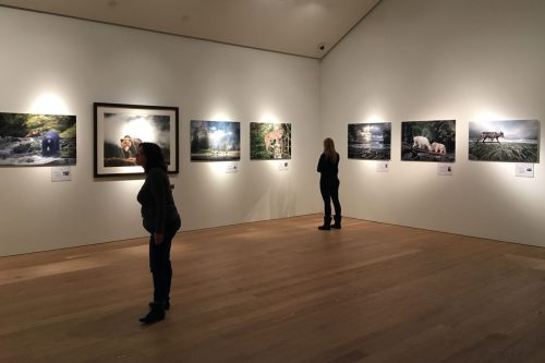 Visitors enjoy the photos at Audain Art Museum, donated to raise money for Coastal Carnivores.