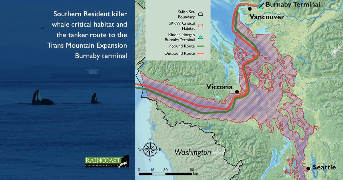Beam Reach Haro Strait Salish Sea, with a map of the Southern Resident killer whale critical habitat and the tanker route tot he Trans Mountain Expansion Burnaby terminal.