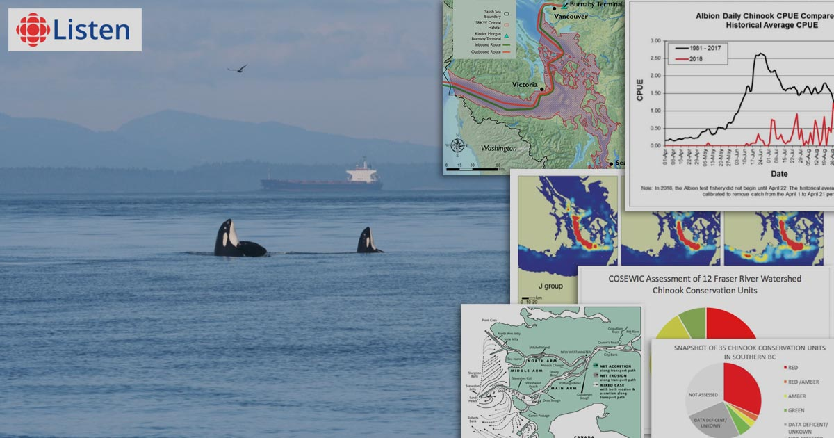 Killer whales spyhop with a tanker in the background and population viability maps in the foreground.