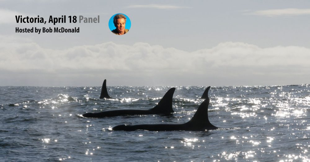 Killer Whales in the foreground and text: Victoria April 18 Panel