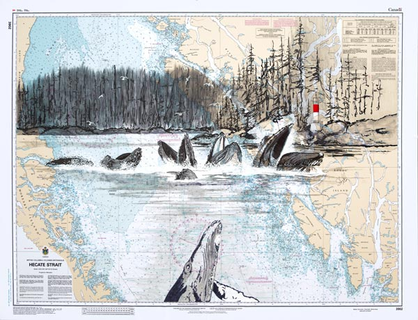 Stuart Arnett's illustration of the humpbacks bubble feeding, illustrated over a map.