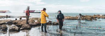 Raincoast Fraser River crew sampling juvenile salmon in the east breach.