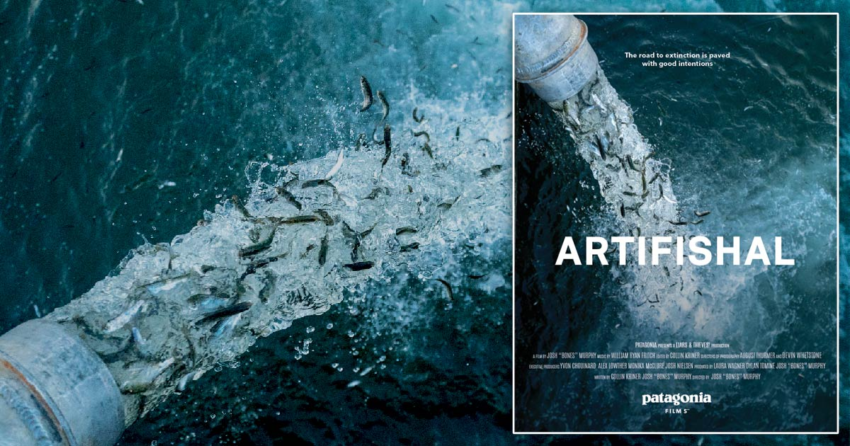 Artifishal, the movie by Patagonia, showing at Cinecenta at UVic.