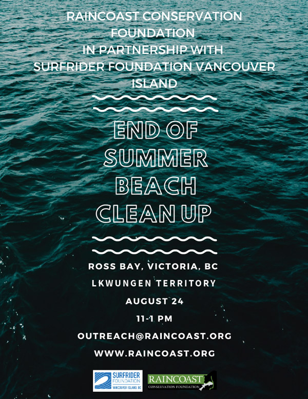 End of summer beach clean up poster.