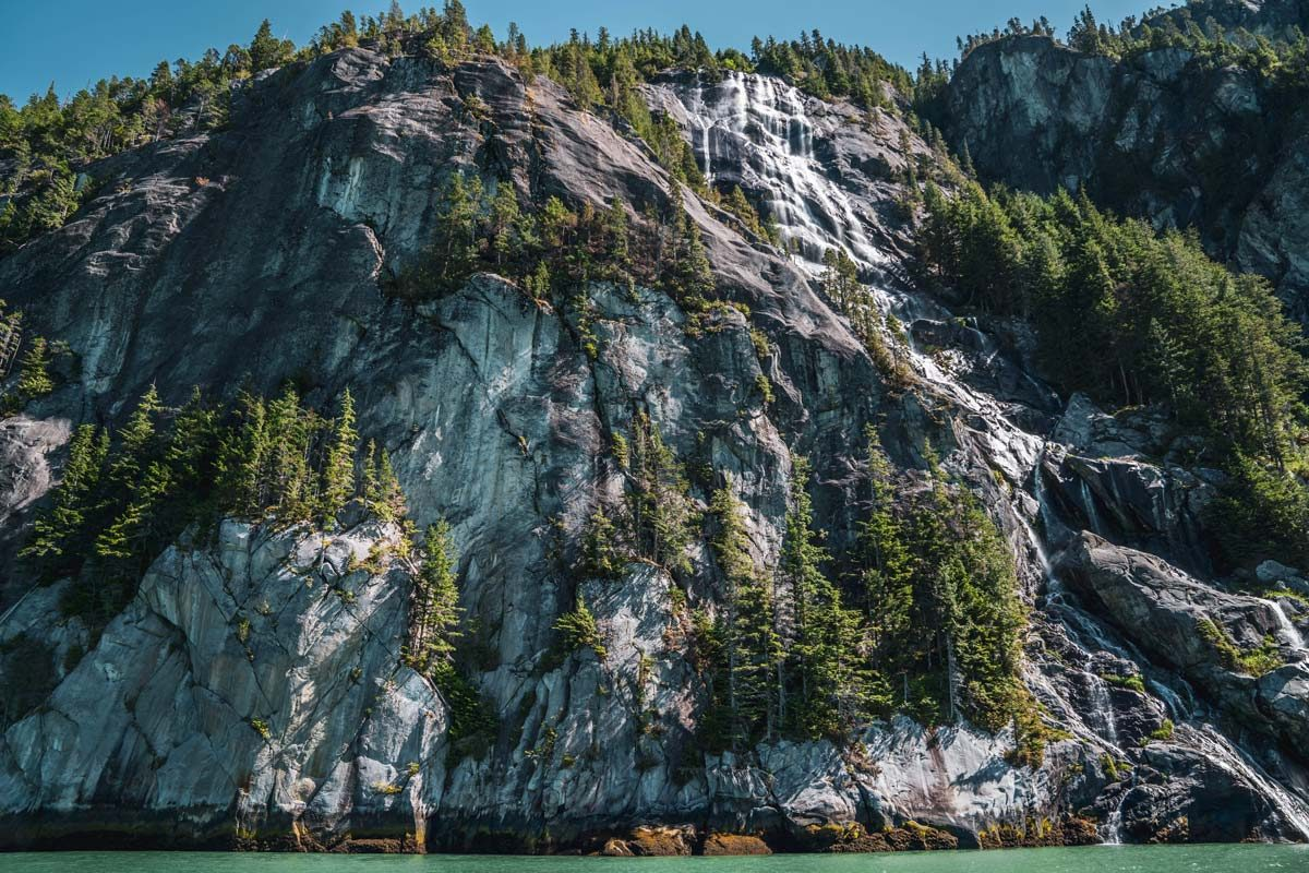 A cliff face looms over the water in the iconic Kitlope valley.