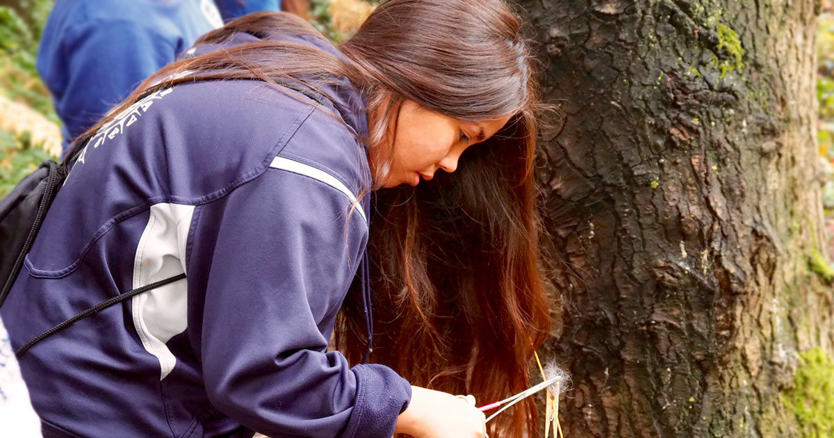 ȽÁU, WELṈEW̱ Tribal School student collecting bear hair sample during a practice session.