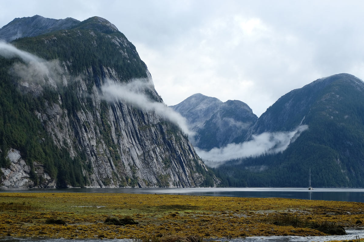 Achiever rests in the waters near a mountain and intertidal area in the Great Bear Rainforest.