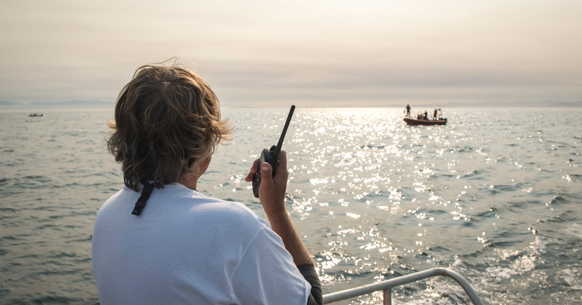 Jeff Foster of The Whale Sanctuary project coordinates the release of live fish during a trial.