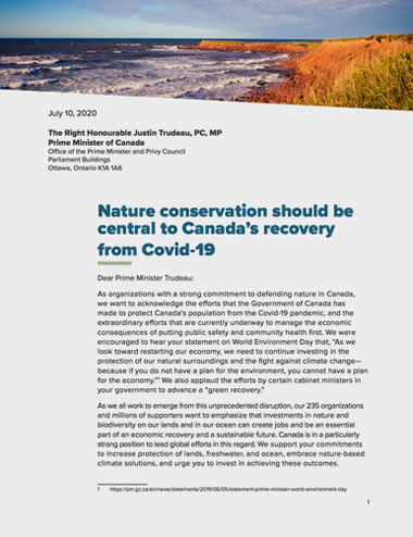 Cover of the open letter on conservation and COVID-19.